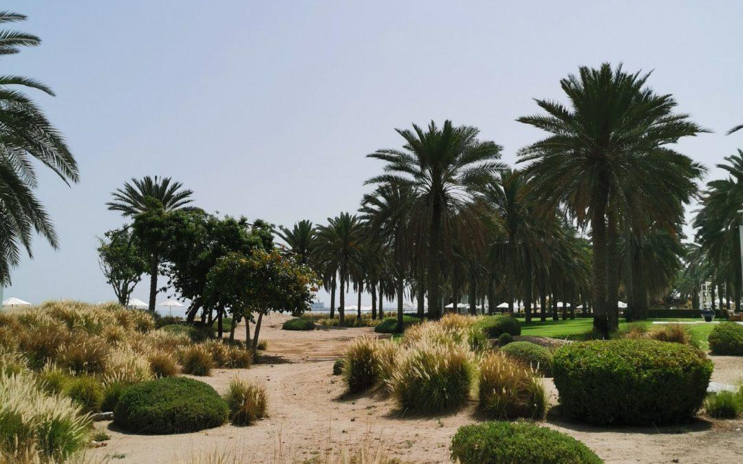 Oman, Arabian niemimaan hämmentävä helmi