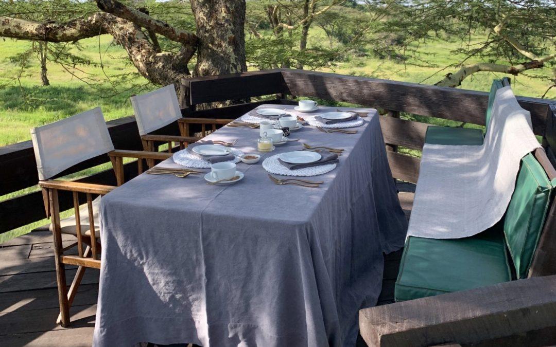 Aamiainen puussa ja muita unohtumattomia safarielämyksiä